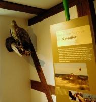 Kleines Museum auf Ummanz