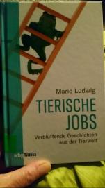 tierische jobs