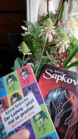 Beikircher Sapkowski