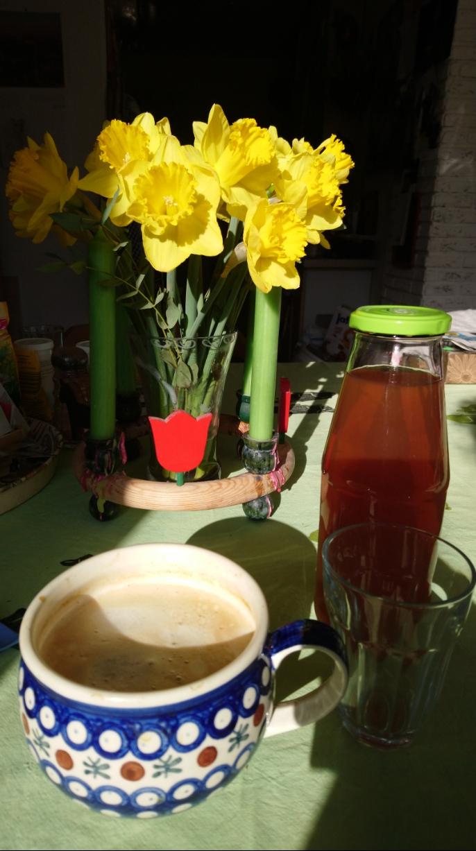 kaffee kombucha