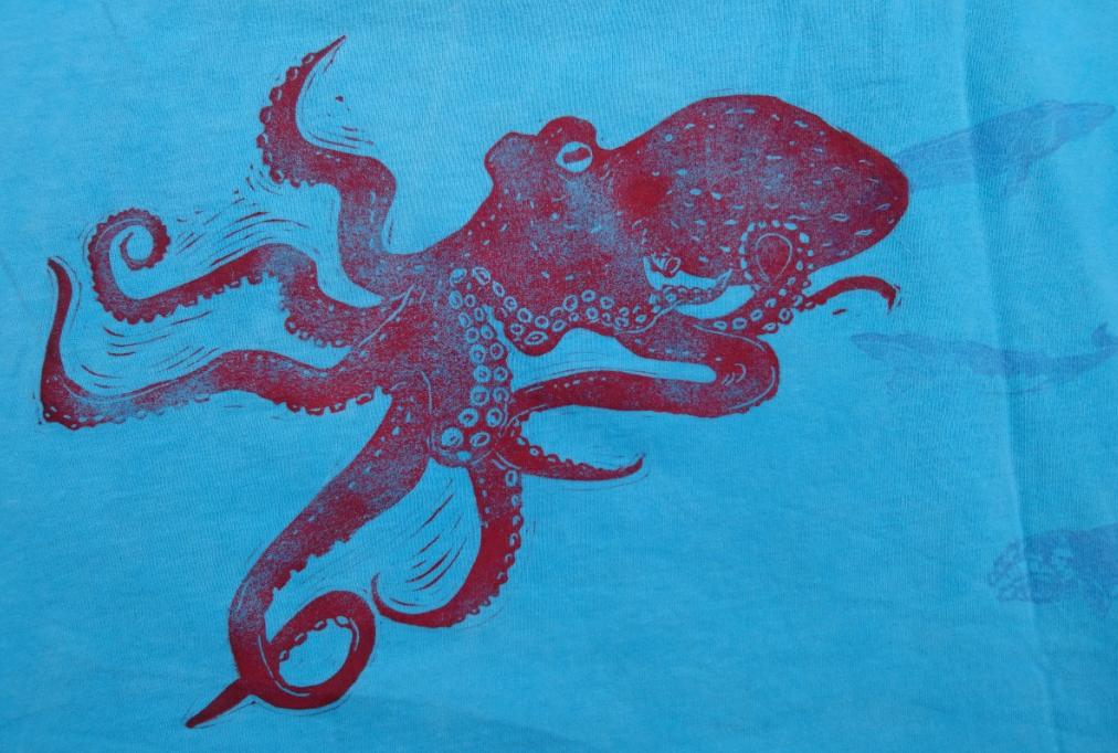 Oktopus b